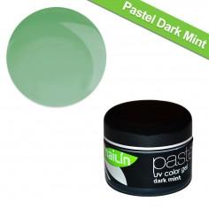 Värviline geel, Pastel Dark Mint, 5g